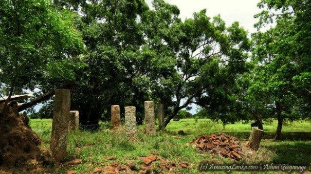 පදවි ශ්රීපුර කිරිගරුඬ පිළිමය පුරාවිද්යා නටබුන් - Padavisripura Kirigarunda Pilimaya Archaeological Site