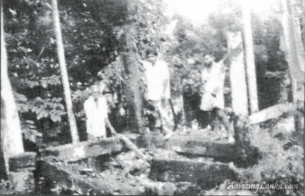 නටබුන් වූ වතුරකුඹුර අම්බලපිටිය අම්බලම - Wathurakumbura Ambalapitiya Ambalama