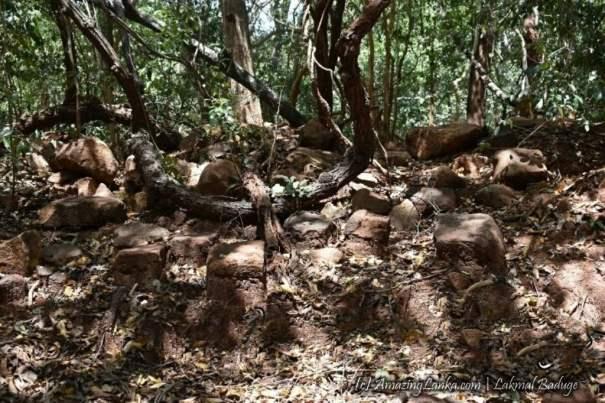 කුච්චවේලි මලයඩිකුලම වැව පුරාවිද්යා භූමිය - Malayadikulama Wewa Archaeological Site in Kuchchaweli