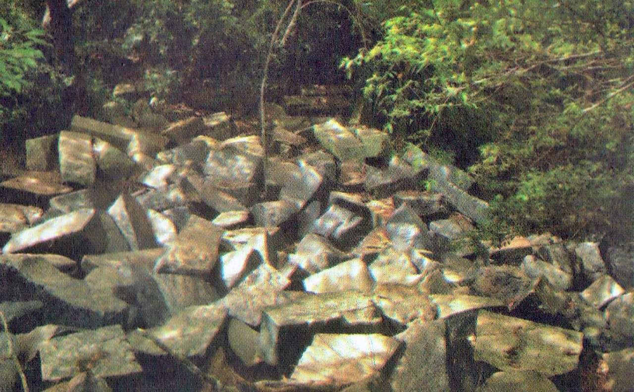 මුලතිවු වනයේ සැඟවුණු වන්නඩි පාළම හා අමුණ - Ancient Wannadi Bridge and Amuna in Mulathivu