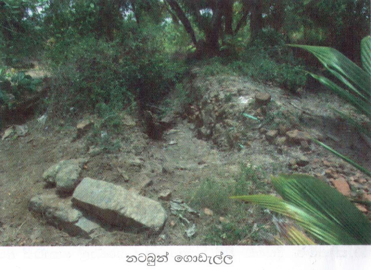 කුරුවිල්කුලම් බෞද්ධ පුරාවිද්යා නටබුන්  -  Kuruwilkulam Archaeological Site in Mulativu