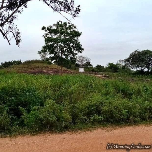 නෙළුම්කුලම රන්කෙත්ගම රජමහා විහාරය පුරාවිද්යා ස්ථානය - Nelumkulama Rankethgama Archaeological Site in Vavuniya