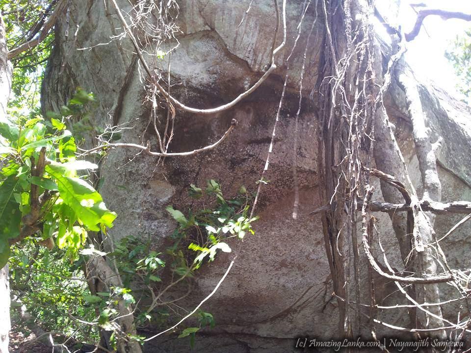සෙට්ටිකුලම් කොන්ග්රාම්කුලම් මහවනයේ හමුවූ පුරාණ ආරාම සංකීරණය - Destroyed Heritage in Settikulam Jungles