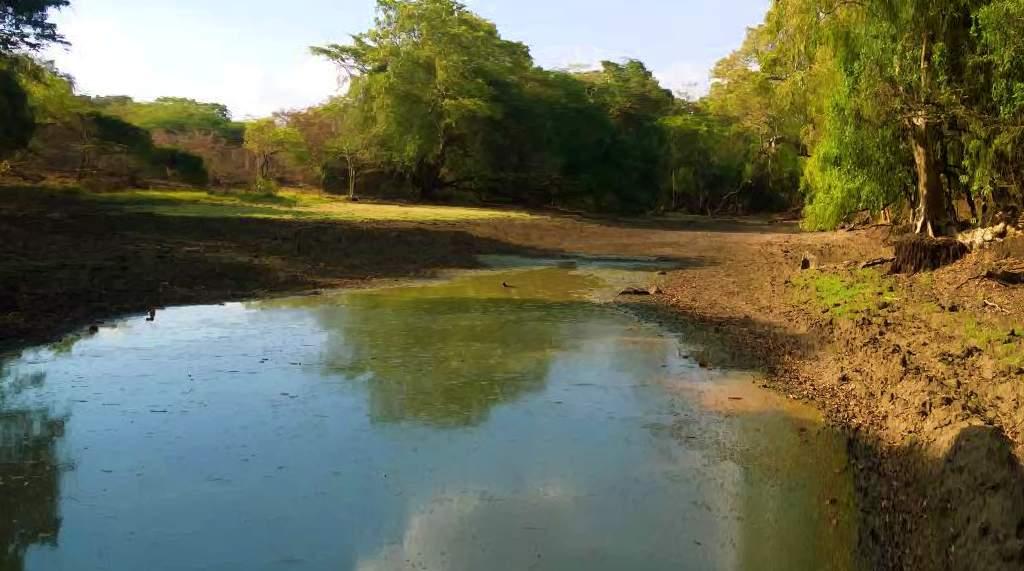 """යාන් ඔය නිම්නයේ සැඟවුණු කොක්එබේ ගම්මානයේ """"එබේ"""" ලෙස හඳුන්වන වතුර වළවල් - The water holes known as """"EBE"""" in the village of Kokebe Yan Oya Valley"""