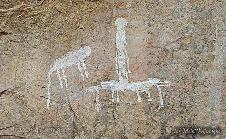 Kiripokunahela Monastic Ruins inside the Yala National Park - යාල තුළ සැඟවුණු කිරිපොකුණහෙළ බෞද්ධ නටබුන්