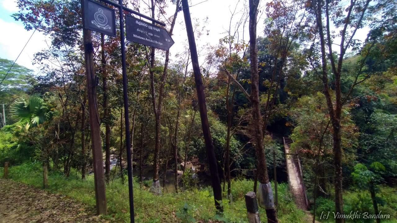 Ancient Niloluwa Bridge over Gurugoda Oya in Mabopitiya - මාබෝපිටිය ගුරුගොඩ ඔය හරහා පුරාණ නිල්ඔලුව දේදුණු පාළම