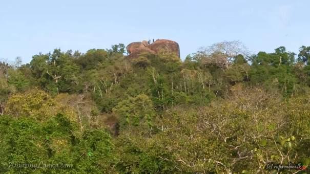 Thalaguruhela Monastic Ruins inside the Yala National Park - යාල තුළ සැඟවුණු තලගුරුහෙල විහාර සංකීර්ණයේ නටබුන්