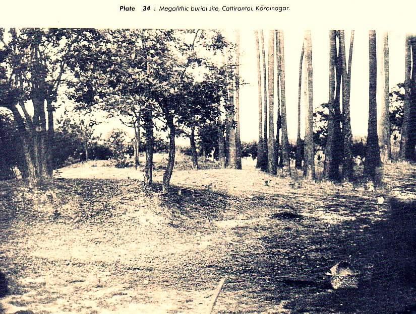 kalapoomy Megalithic Burial Ground area