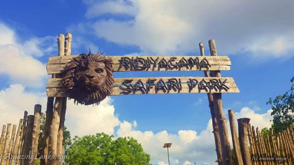 Ridiyagama Safari Park in Hambantota - හම්බන්තොට රිදියගම සෆාරි උද්යානය