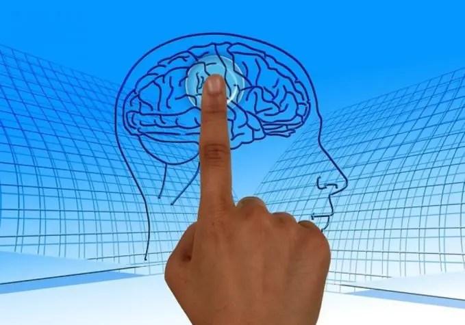 The Risk Factors for Alzheimer's Disease