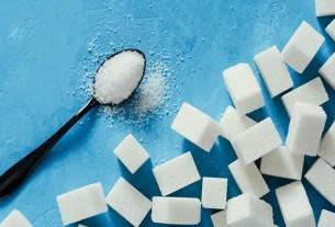 Non-Sugar Sweeteners
