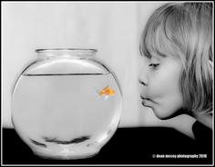 Fishbowl E Barrette