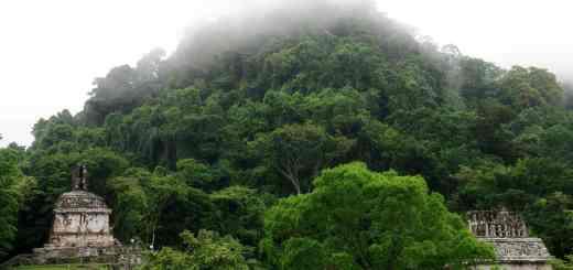 Die Kreuzgruppe in Palenque