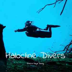 Diving in Cenotes - Halocline Divers - Yucatan - Mexico - Riviera Maya - deutsch