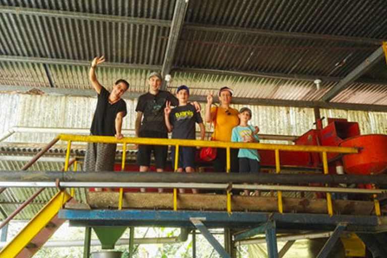 Costa Rica Coffee Plant Tour