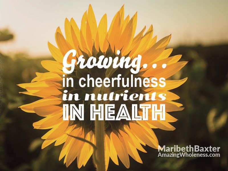 Cheerful Sunflowers for Nourishment