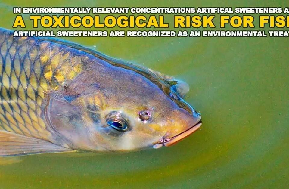 toxic-fish