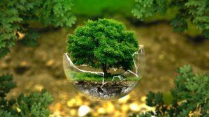 Geóloga analisa impactos do Projeto de Lei que flexibiliza regras de licenciamento ambiental