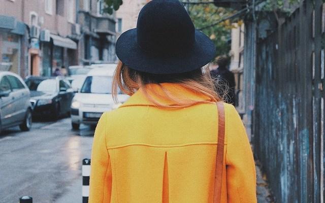 Žuti sako i zeleni fascikl - ili o čarima birokracije