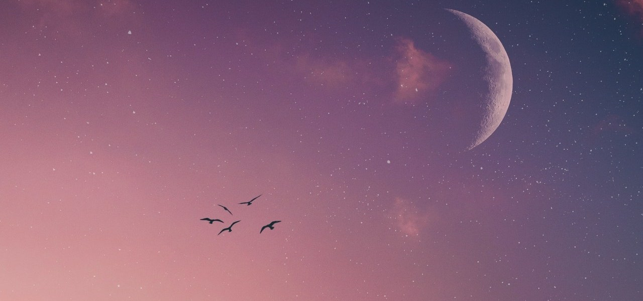 Prvi mladi Mjesec u 2021. - Što nam donosi?, Na koga će najviše utjecati Mlad Mjesec u Lavu?
