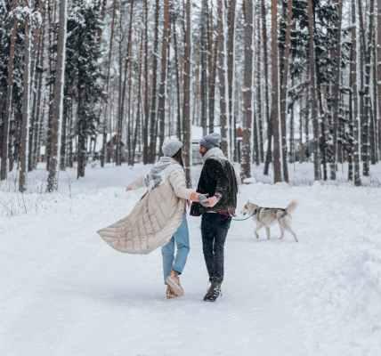 Moramo li trpjeti neke ljude u našem životu? , cold snow healthy wood