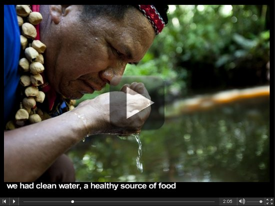 Video - A Message to You from the Ecuadorian Amazon