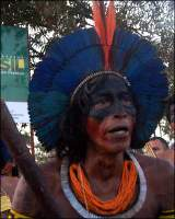 Occupy Belo Monte!