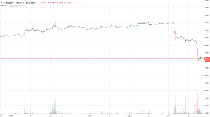 Bitcoin price 7-day graph   Source: TradingView