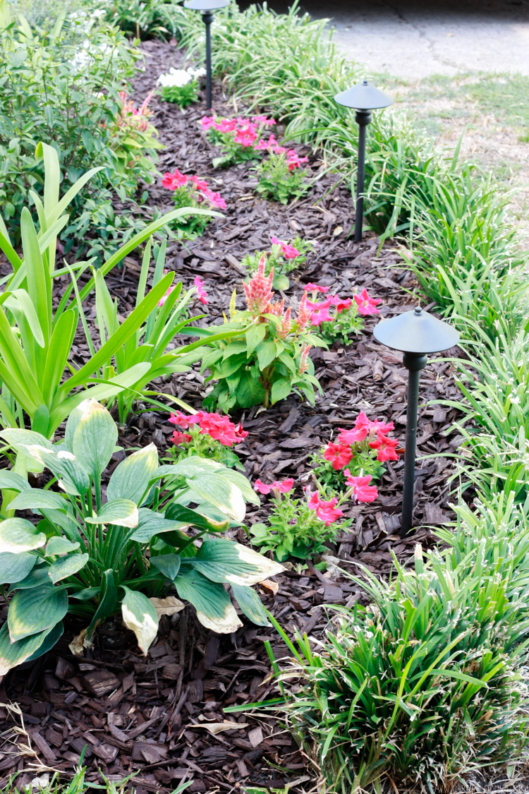 curb-appeal-flower-bed-makeover-18