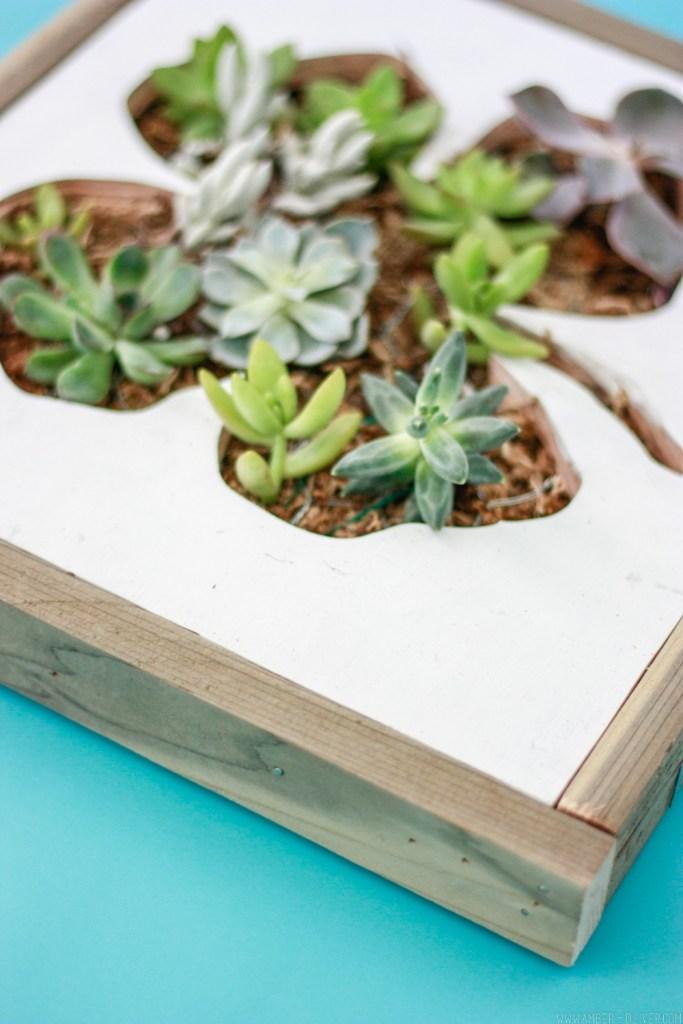 DIY Shamrock Succulent Wall Planter