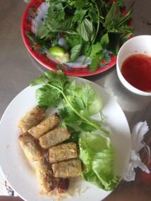 veggie spring rolls, fried