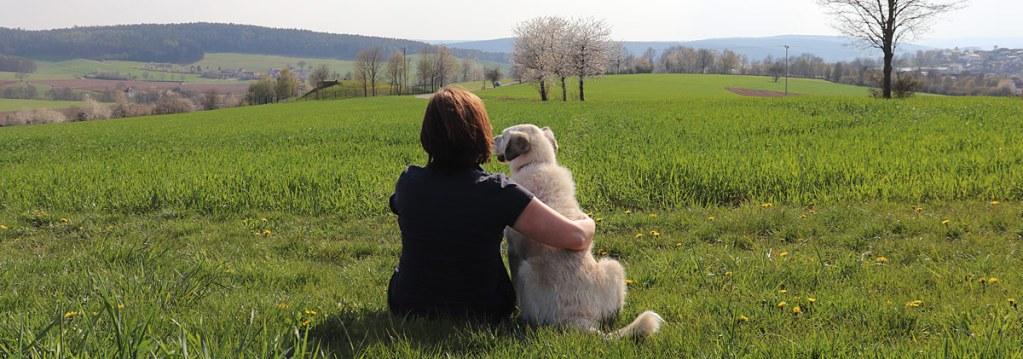 Kommunikation von Hunden