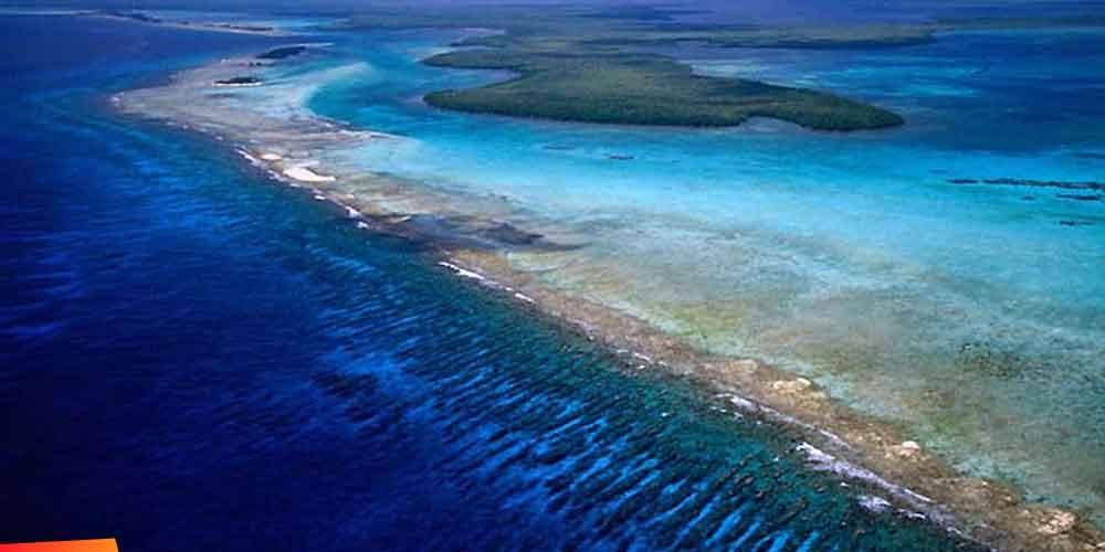 Image result for belize barrier reef photos