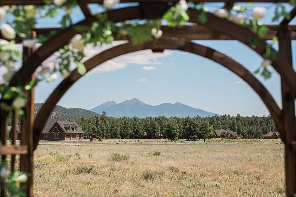 Wedding arch under San Francisco Peaks.