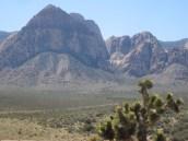 Red Rocks View