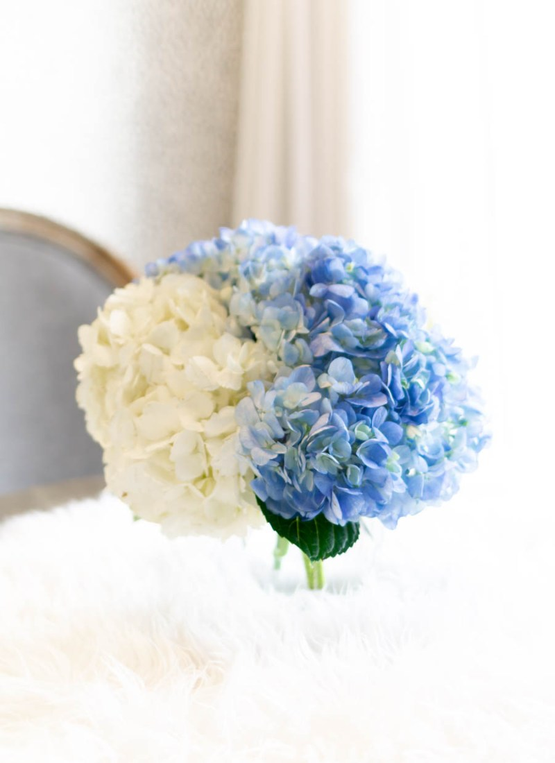 How To Keep Hydrangeas Alive For 2+ Weeks