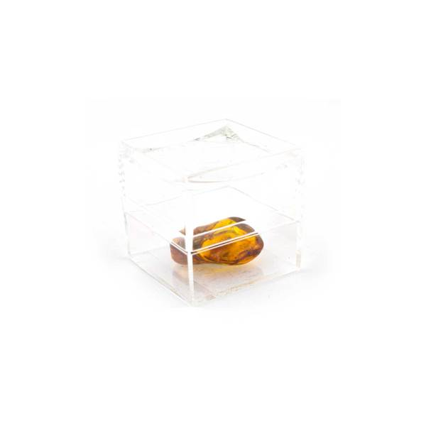 Plastic capsule with amber piece