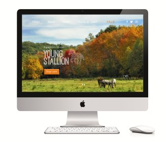 website2-on-mac