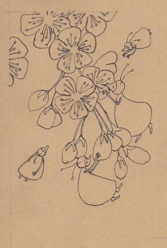 Lentejuffers inkt lr