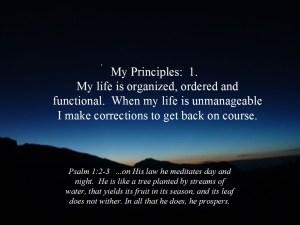 Principles 1