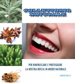 colluttorio1