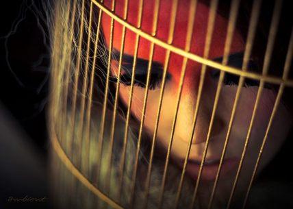 christina_winn_cage_web