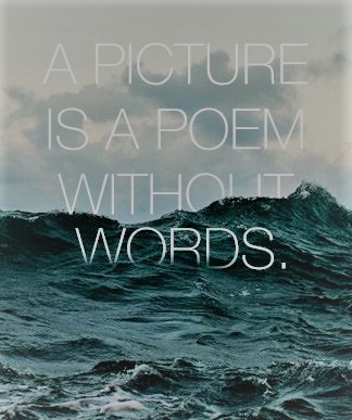 PhotographyQuotes7