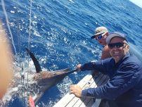 Blue Marlin tagged