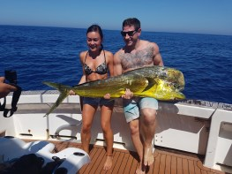 A beautiful Mahi Mahi - Autumn fun...