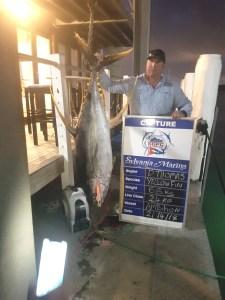 Yellowfin tuna 240417