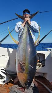 Mikko's Yellowfin