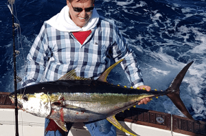 Inshore Yellowfin