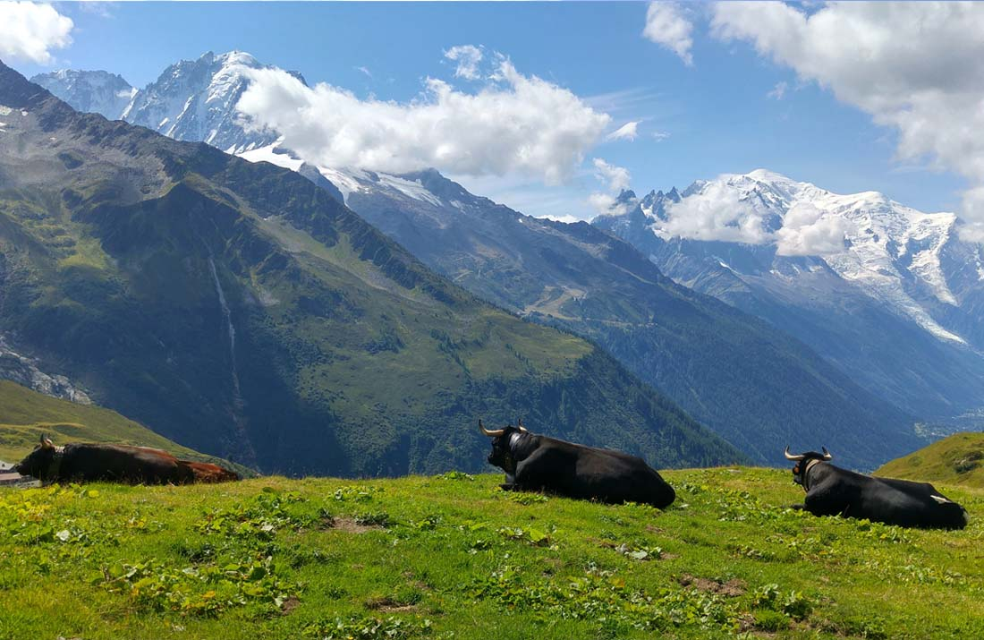 Alpages de Balme Chamonix-Mont-Blanc