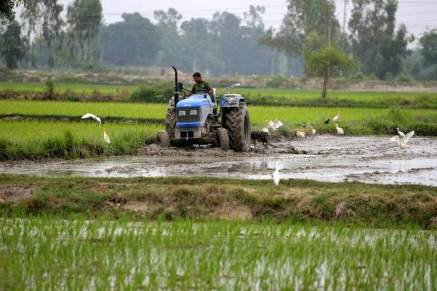 Modi Launches Kisan Scheme over one crore farmer gets first Instalment